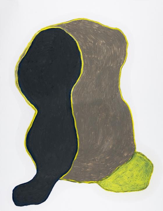 pastel gras 65x50 2016-54