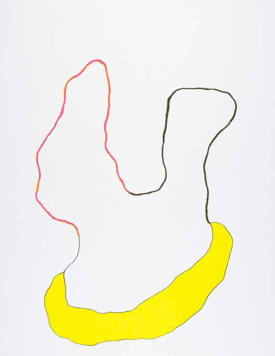 pastel gras 65x50 2016-63