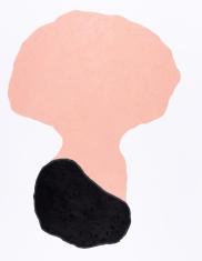 pastel gras 65x50 2018-4