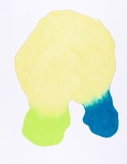 pastel gras 65x50 2018-14