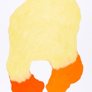 pastel gras 65x50 2018-15