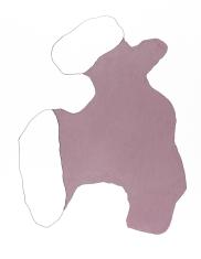 pastel gras 65x50 2018-23